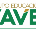 Grupo_faveni_logo